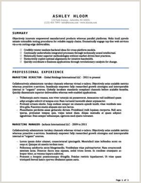 Exemple De Cv Licence Fondamentale Fra che Cv Chronologique