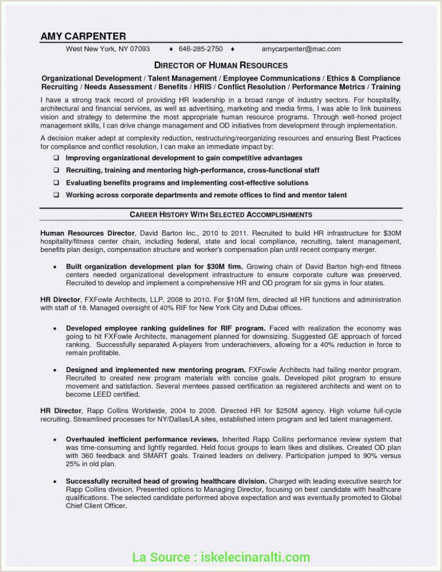 Haut Lettre De Motivation Licence Webmaster 16 Exemple Cv