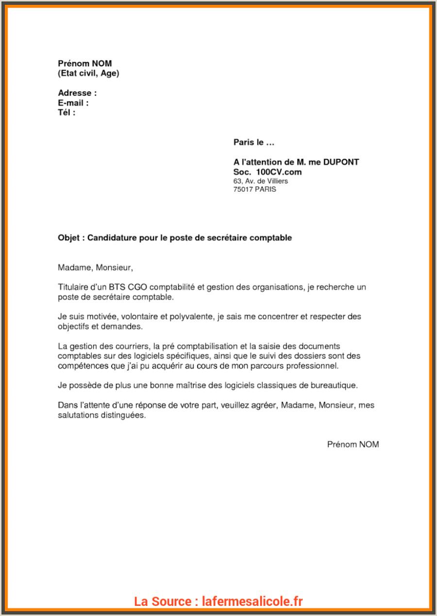 Exemple De Cv Manutentionnaire Parfait Lettre De Motivation Livreur Manutentionnaire Cv Et