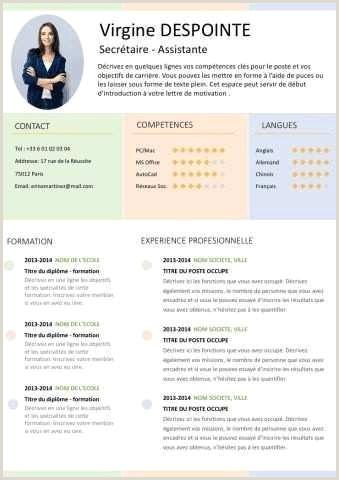 Exemple De Cv Marketing Modele De Cv Femme