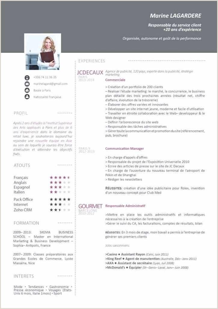 Exemple Cv Chauffeur Livreur Debutant 62 Faire Des Cv