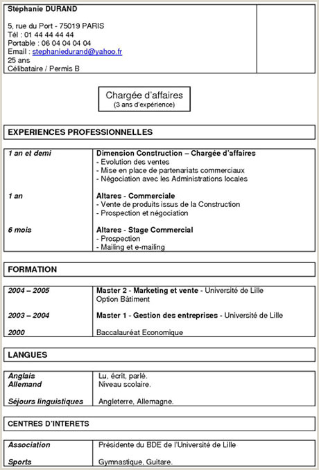 Exemple De Cv Mixte Cv Modele Batiment