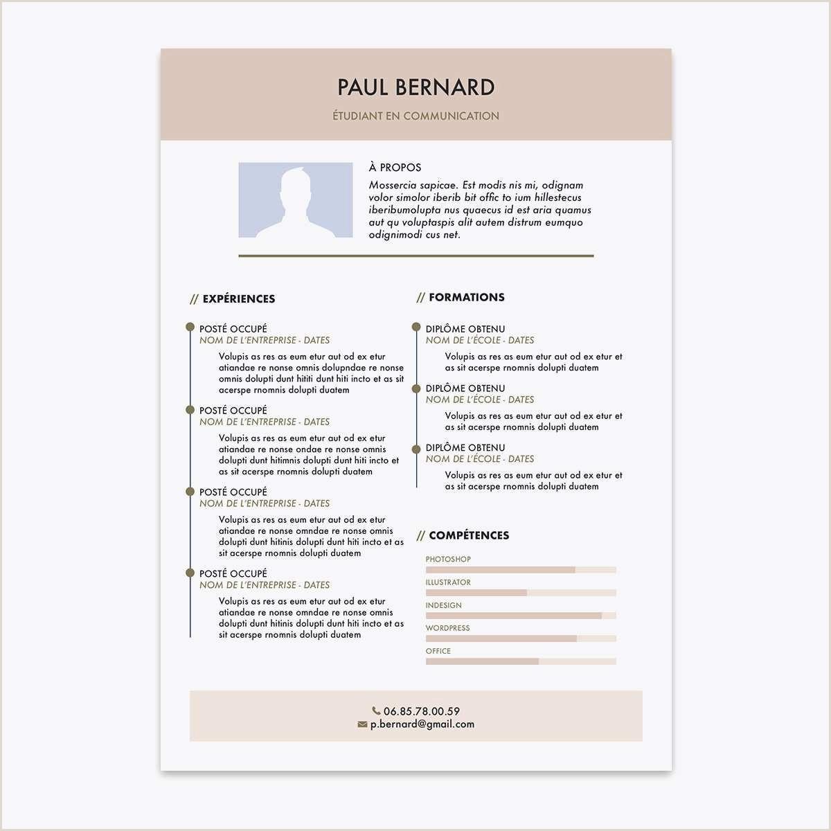 Exemple De Cv Numerique 13 Frais Stock De Exemple Cv Chef De Projet