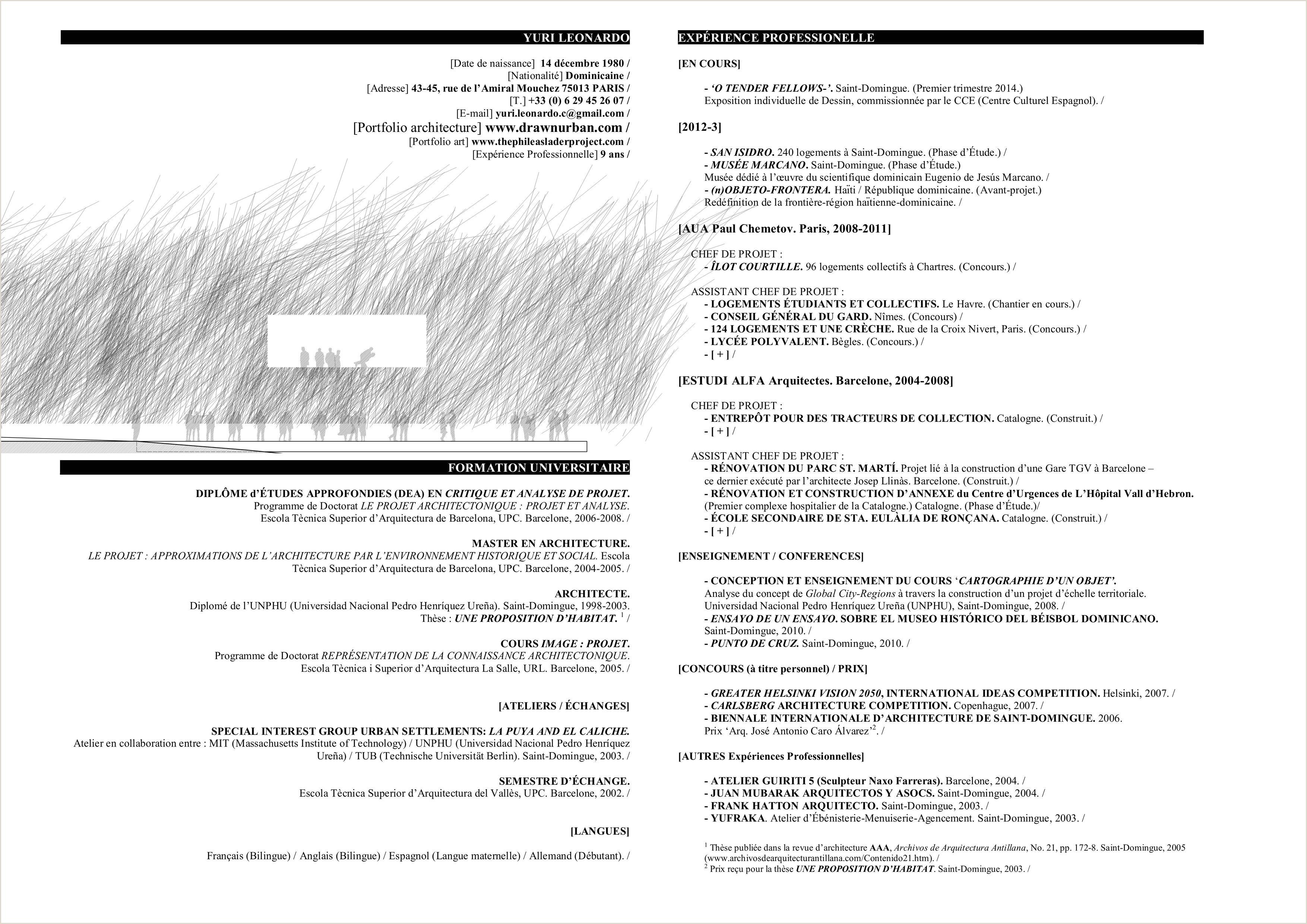 Exemple De Cv Objectif Professionnel Modele De Cv Haitien Le Luxe Cv Technicien Informatique