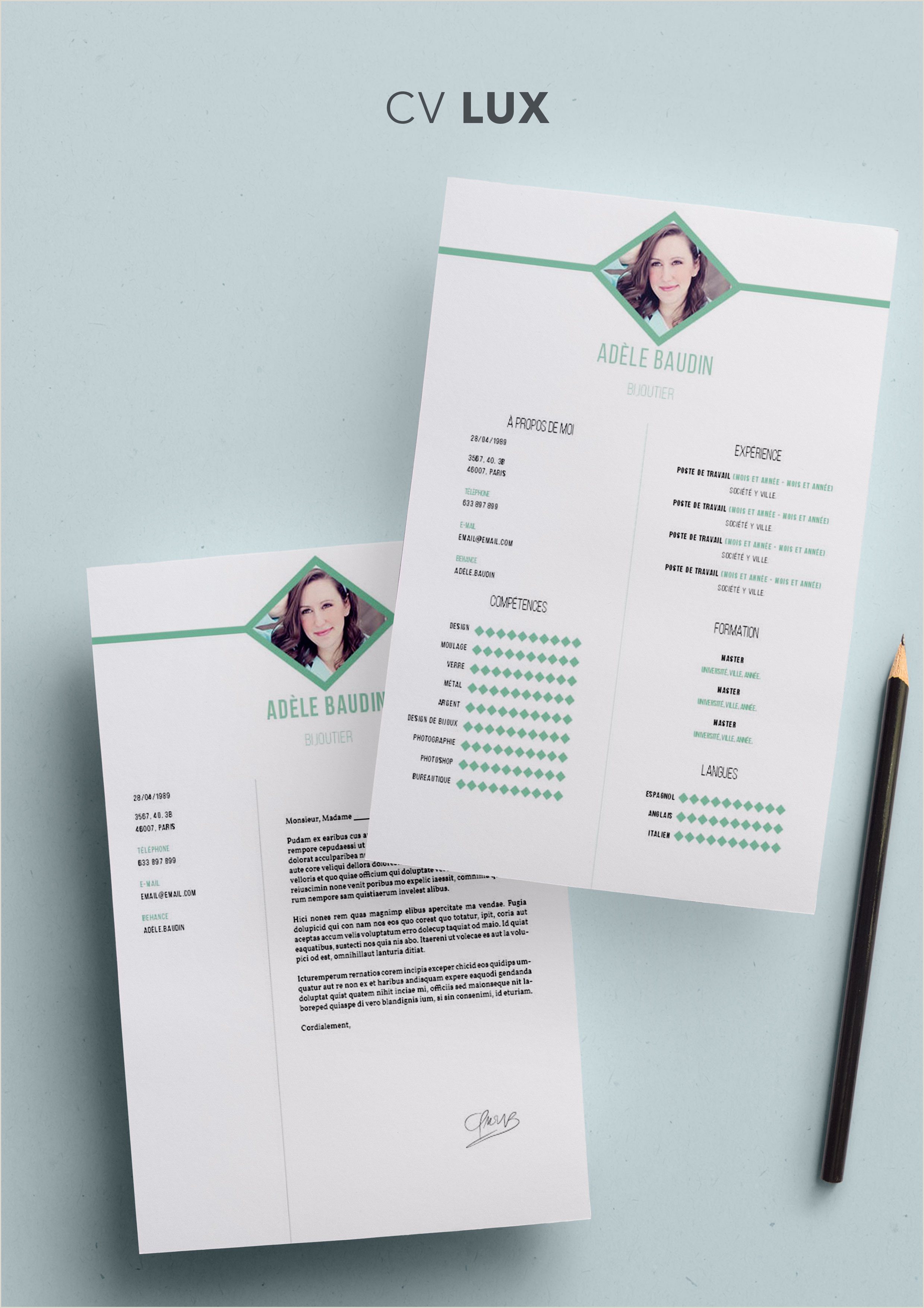 Exemple De Cv Open Office A Telecharger Curriculum Vitae Mod¨le Lux