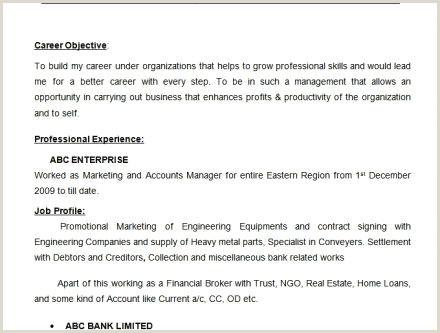 Cv Directeur mercial Impressionnant Modele Cv assistante