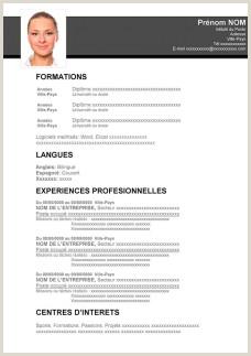 Exemple De Cv Pdf En Français Bugs Buggy Page 392 Sur 751