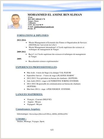 Cv De Travail Maroc