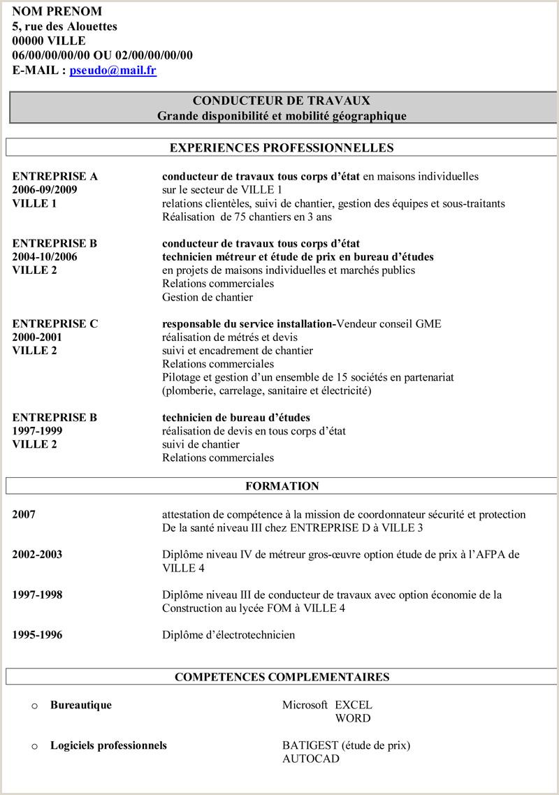 Exemple De Cv Pour Chauffeur Pdf Cv En Ligne Flash Code