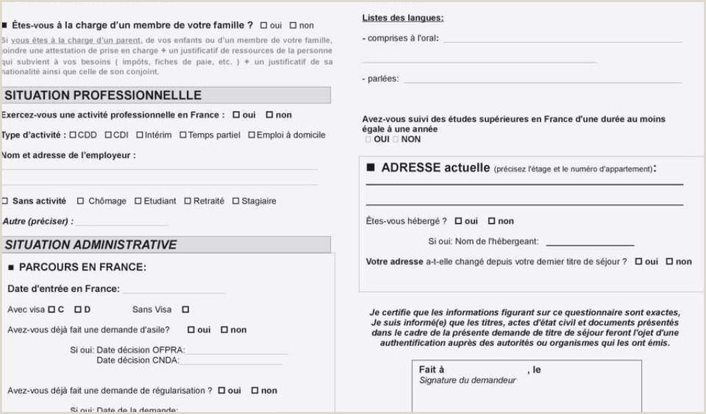 Exemple De Cv Pour Chauffeur Pdf Lettre De Motivation Auxiliaire De Vie Scolaire Sans Diplome