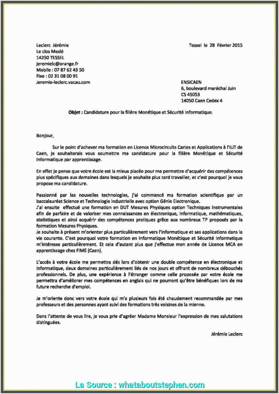 Exemple De Cv Pour Demande Demploi Pdf Lettre De Motivation Pour Licence Informatique Créatif