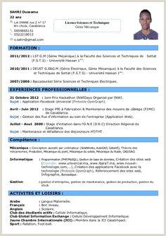 Exemple De Cv Prof De Français 11 Meilleures Images Du Tableau Cv En 2017