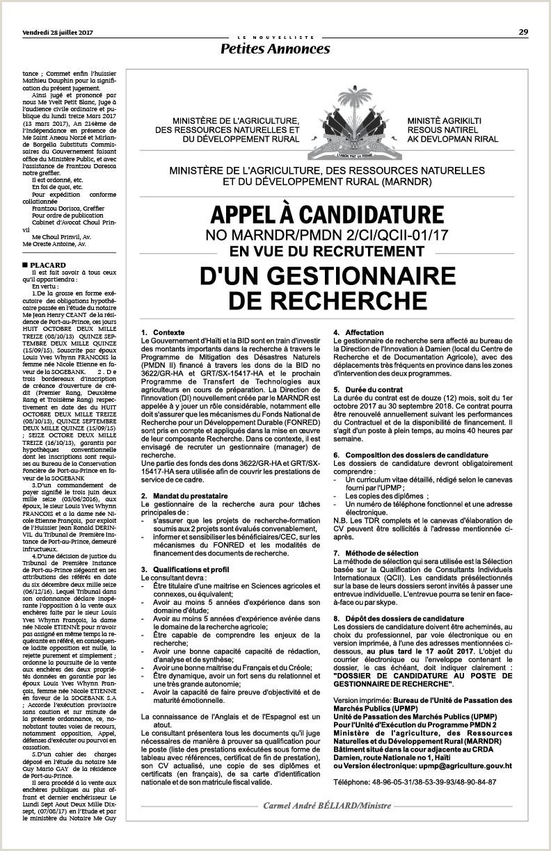 Exemple De Cv Prof De Français Pdf Lenouvelliste