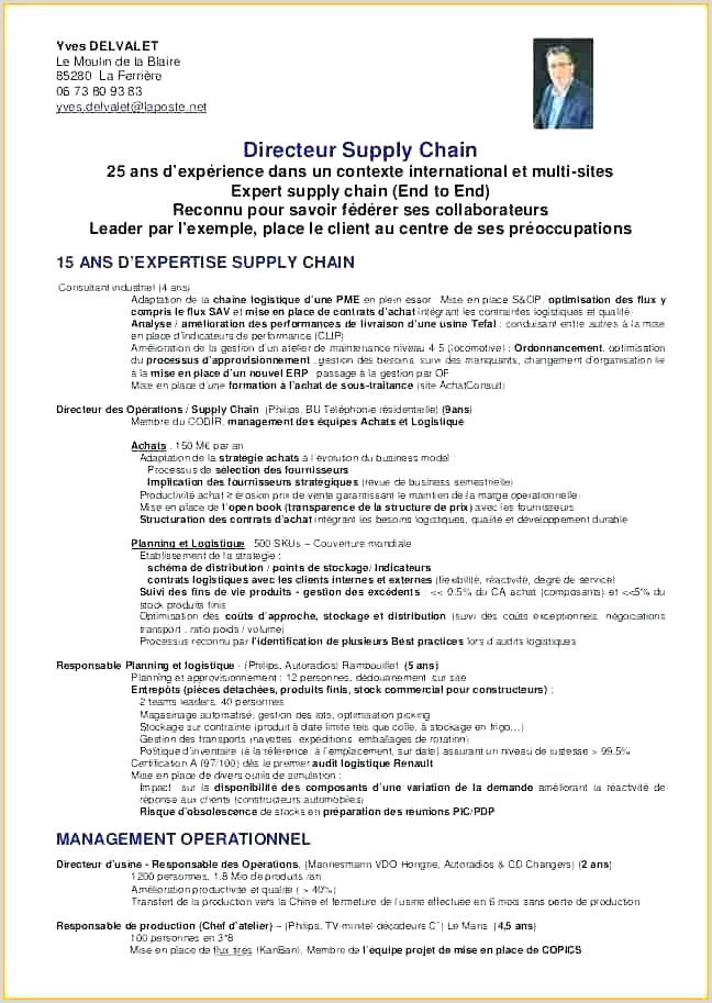Exemple De Cv Professionnel 2019 Loi Pinel Lille échantillon 43 Exemple De Cv Professionnel