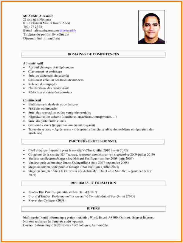 Exemple De Cv Professionnel En Anglais Pdf 13 Cv En Anglais Exemple Pdf