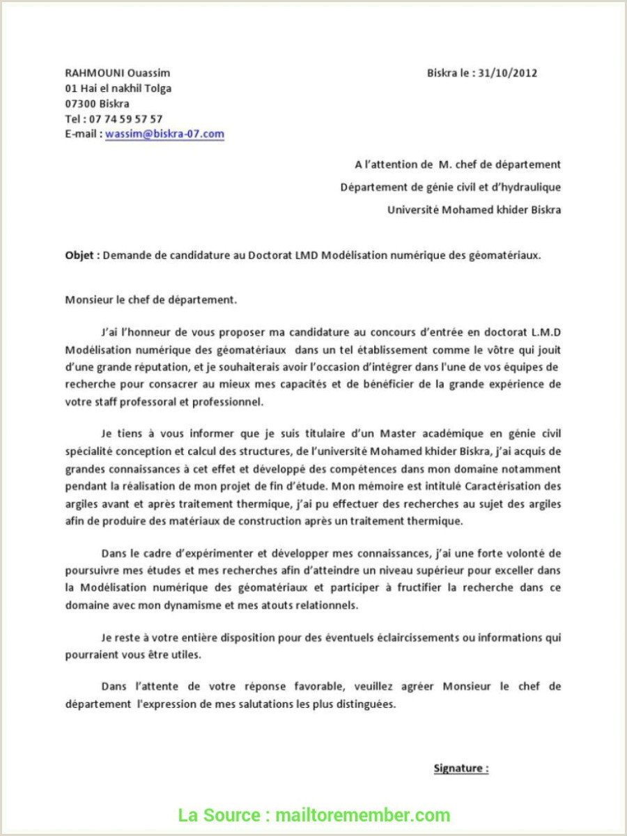 Exemple De Cv Professionnel En Pdf Idéal Exemple De Lettre De Motivation Pour Le Master Pdf