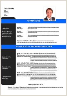 Exemple De Cv Professionnel Pdf Modele Cv Gratuit A Telecharger Pdf