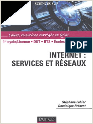 Exemple De Cv Qhse Internet Services Et R Amp Eacute Seaux