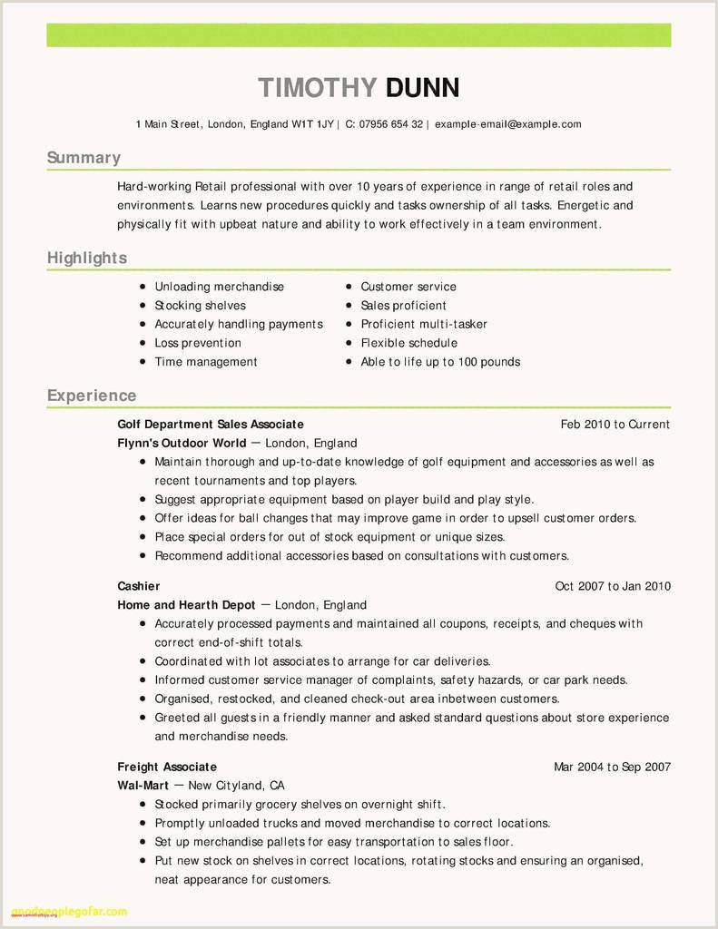 Exemple Cv 2017 Génial Cv Resume Example Customer Service