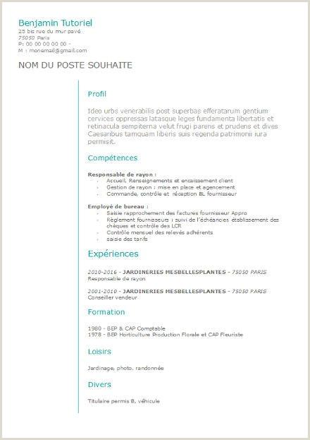 Exemple De Cv Quebec Etudiant Cv A Remplir format Open Office