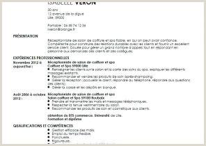 Exemple De Cv Receptionniste Hotel Lettre De Motivation D Un Lycéen Pour Un Job D été Brain Sa