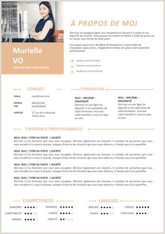 Exemple De Cv Ressources Humaines Et Communication Exemple De Cv Open Office Gratuit  Télécharger