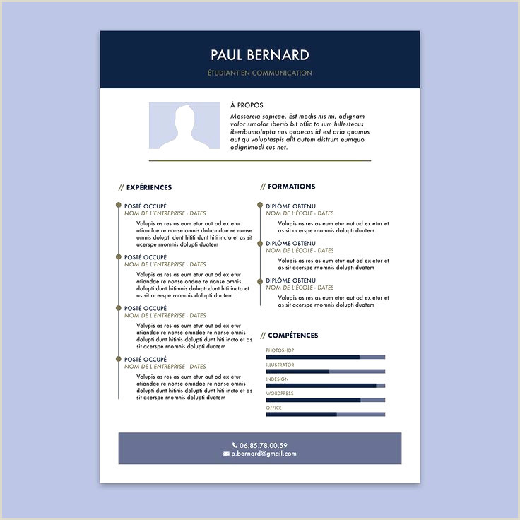 Exemple De Cv Restauration Rapide Exemple De Cv Simple Pdf Meilleur De Cv Simple Et Rapide