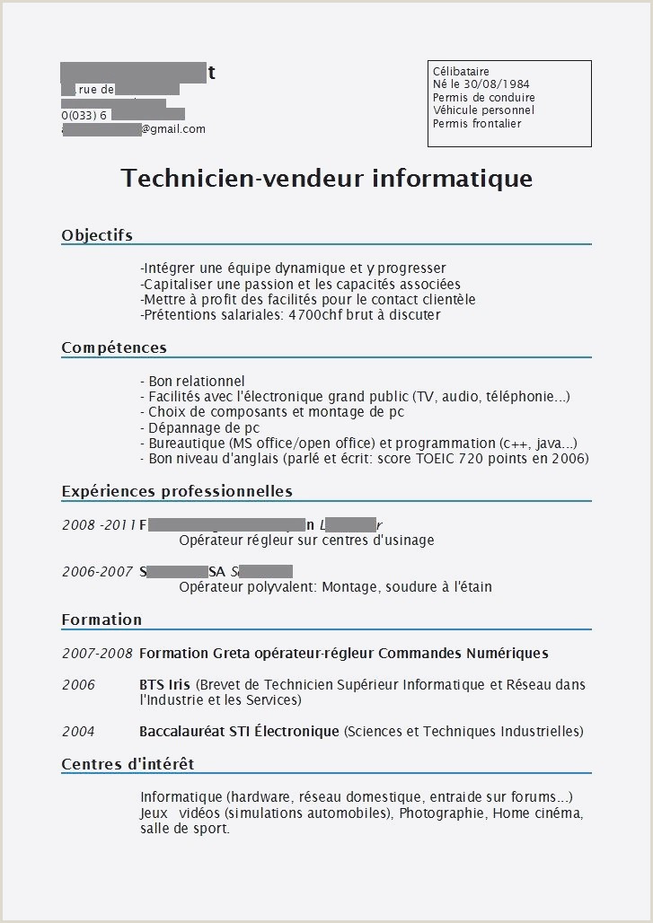 Cv Technicien Informatique