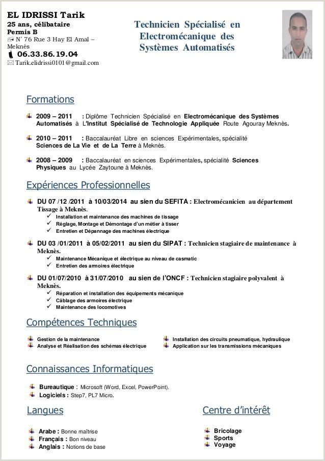 Exemple De Cv Technicien Informatique Word Exemple De Cv Technicien Informatique Douce Exemple Cv