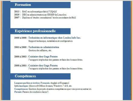 Exemple De Cv Technicien Support Informatique Judo Club Sierentz