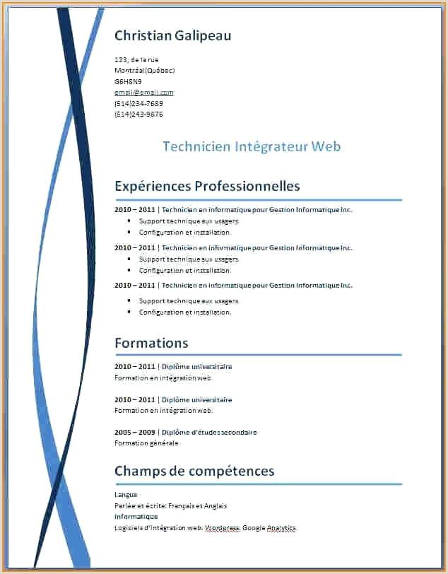 Exemple De Cv Technicien Support Informatique Modele Type Cv Word