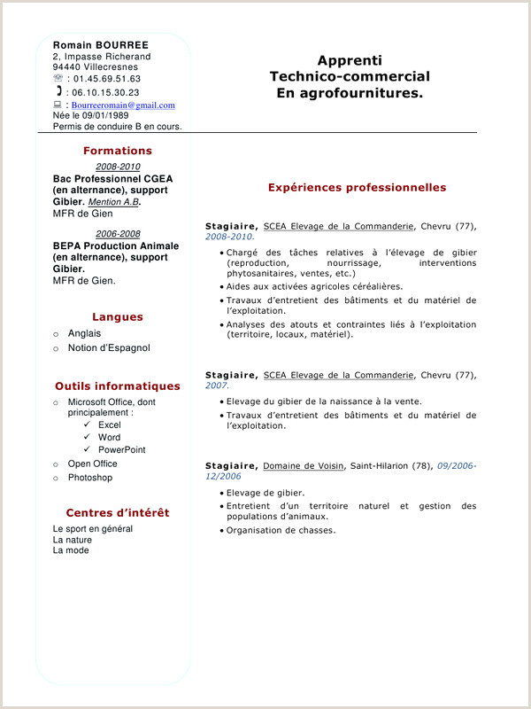 Exemple De Cv Technico Commercial Cv Technico Mercial Simple Lettre De Motivation Merciale