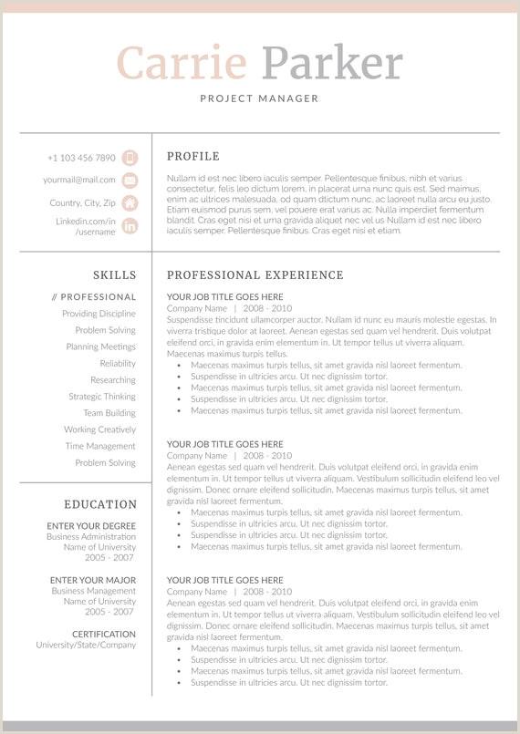 Curriculum vitae mod¨le 4 page Mod¨le de CV lettre de motivation pour MS Word Téléchargement
