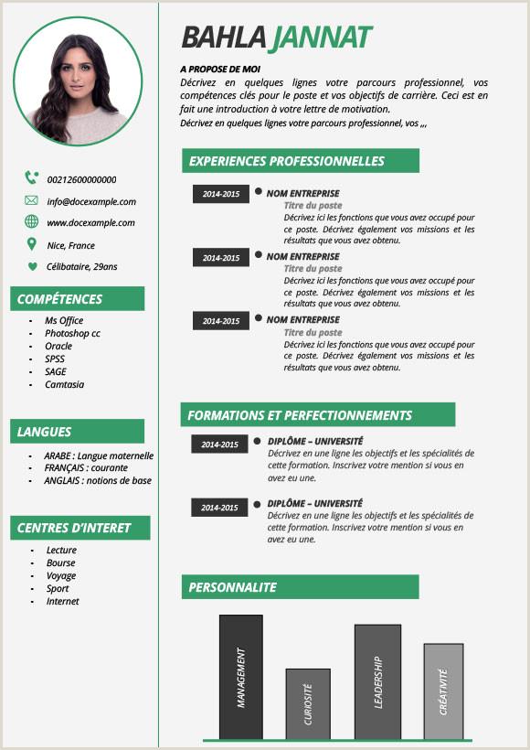 Exemple De Cv Tunisie Pdf Meilleurs Site De Téléchargement De Cv Gratuitement