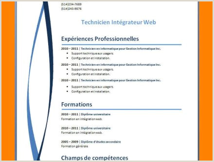 Exemple De Cv-uri Europass Completate Idees Photo