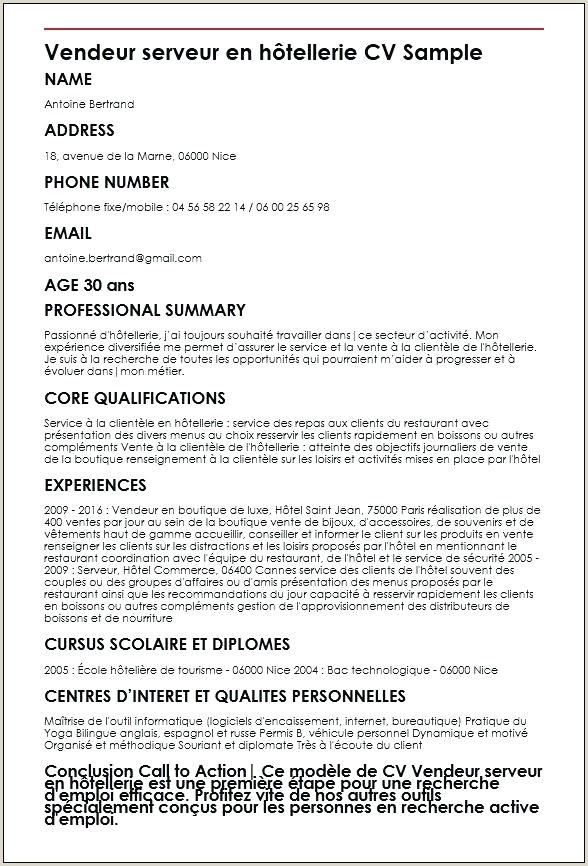 Cv Vendeur Polyvalent Luxe Mon Cv Personnel Portfolio