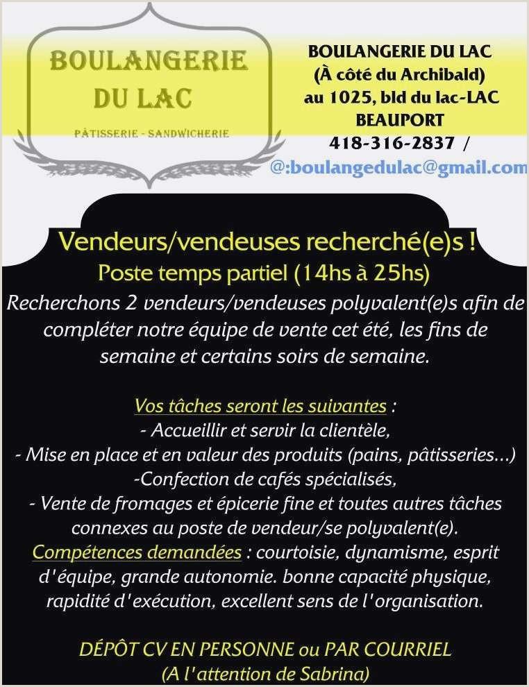 Exemple De Cv Vendeuse En Boulangerie Exemple De Cv Vendeur Bel Cv De Vendeur Exemple Bmw X5