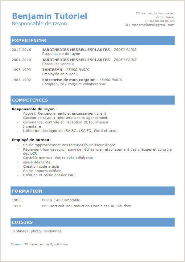 16 cv vierge  remplir gratuit pdf