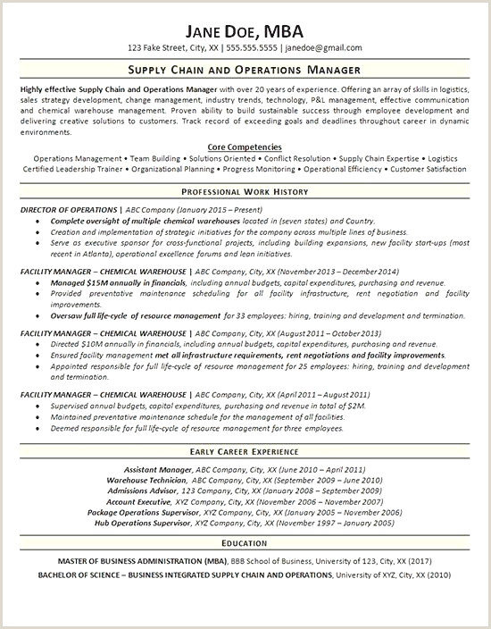 Facilities Management Resume Entertaining Functional Resume Sample Resume Design