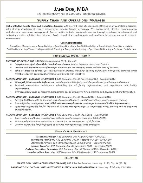 Entertaining Functional Resume Sample Resume Design