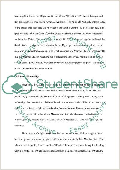 European Law Paper Essay Example