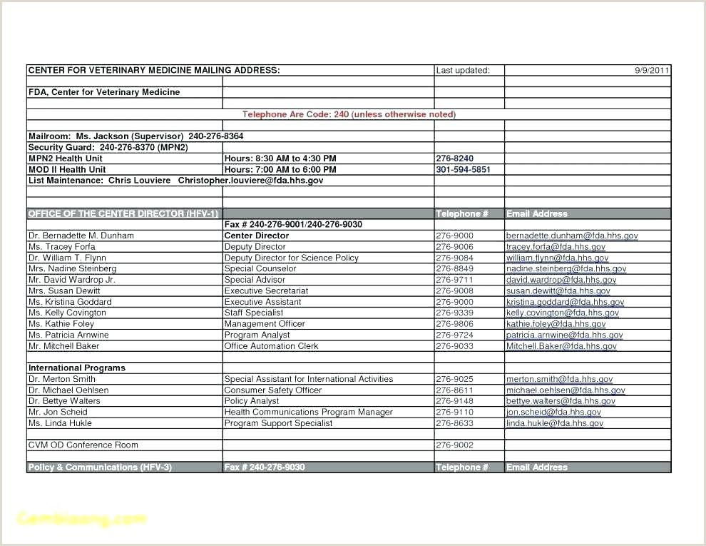 Family History Essay Examples Template Family Tree Google Docs Medical History Blended