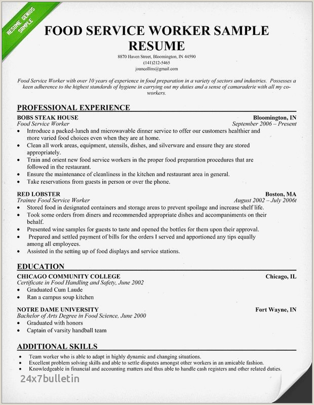 Fashion Industry Resume Examples New Sample Food Service Resume