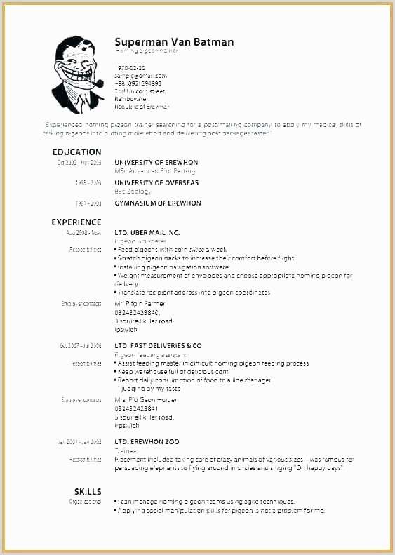 Fast Food Resume Objective Lettre De Motivation Fast Food Professional Resume Template