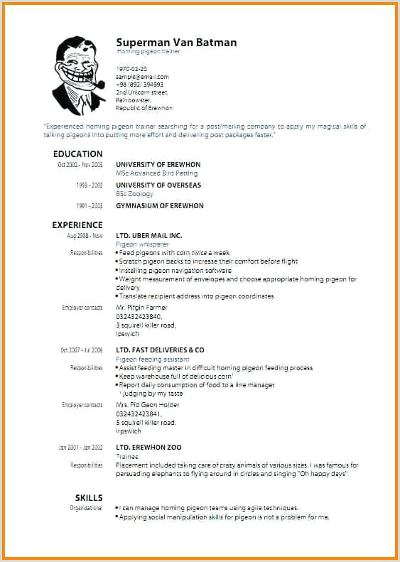 Federal Resume Template Word Functional Resume Template Word Best Federal Resume Template