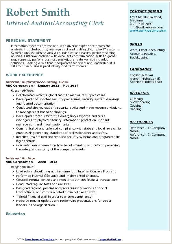 File Clerk Resume Objective Internal Auditor Accounting Clerk Resume Sample Internal