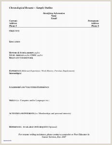 Resume Security Guard Free New Blank Resume format Resume