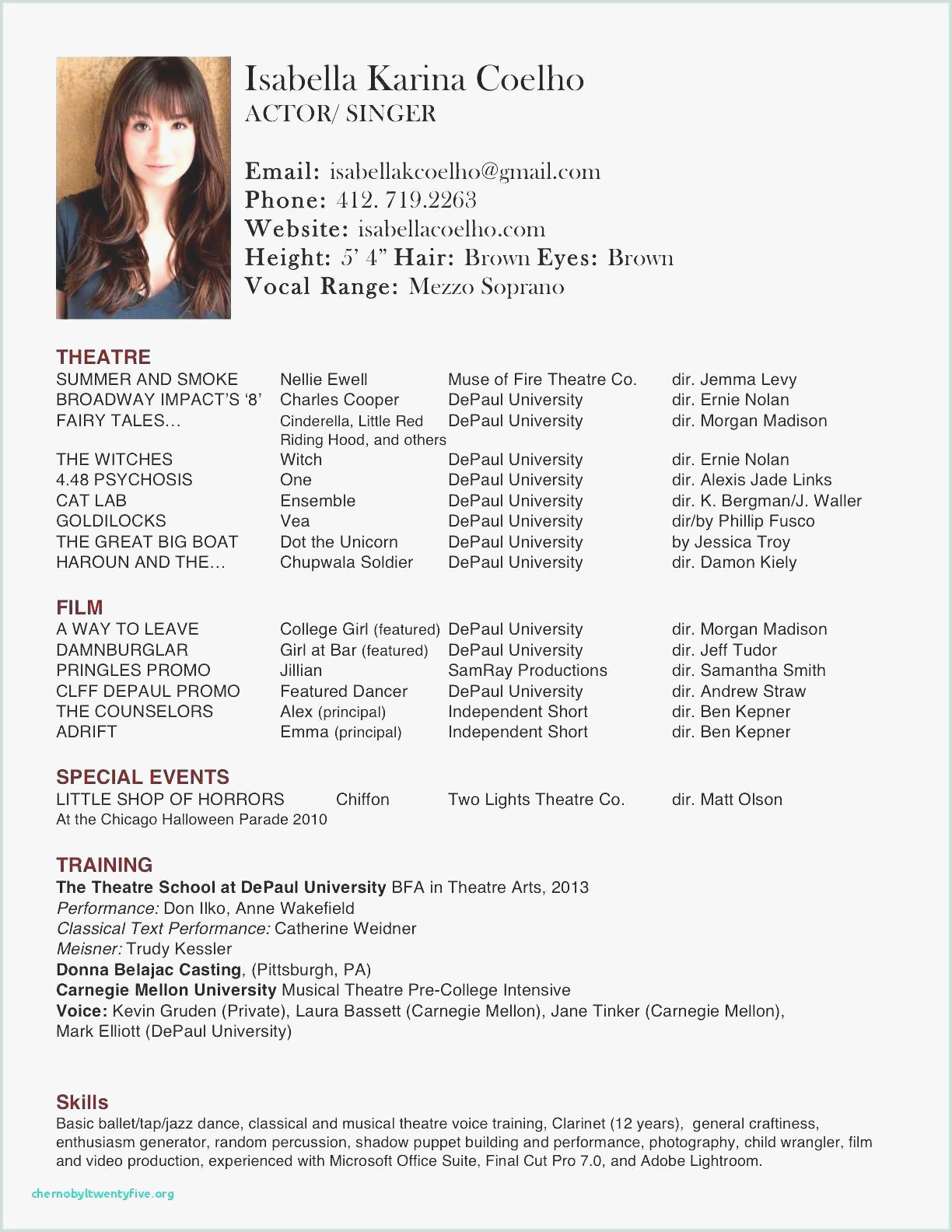 Model Resume Example Professional Sample Resume for Cook