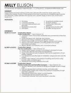 Finish Carpenter Resume Carpenter Resume Examples New Resume formats New formats for