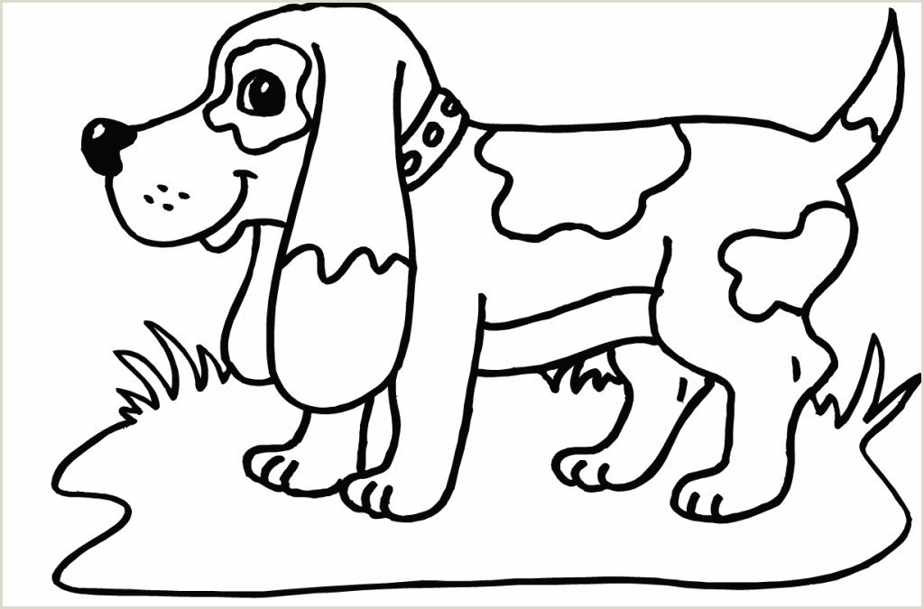 Flat Stanley Printable Awesome Pet Dog Coloring Pages – Qulu